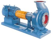 3180 Process Pumps